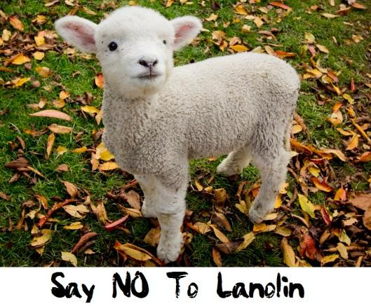 lanolinheader
